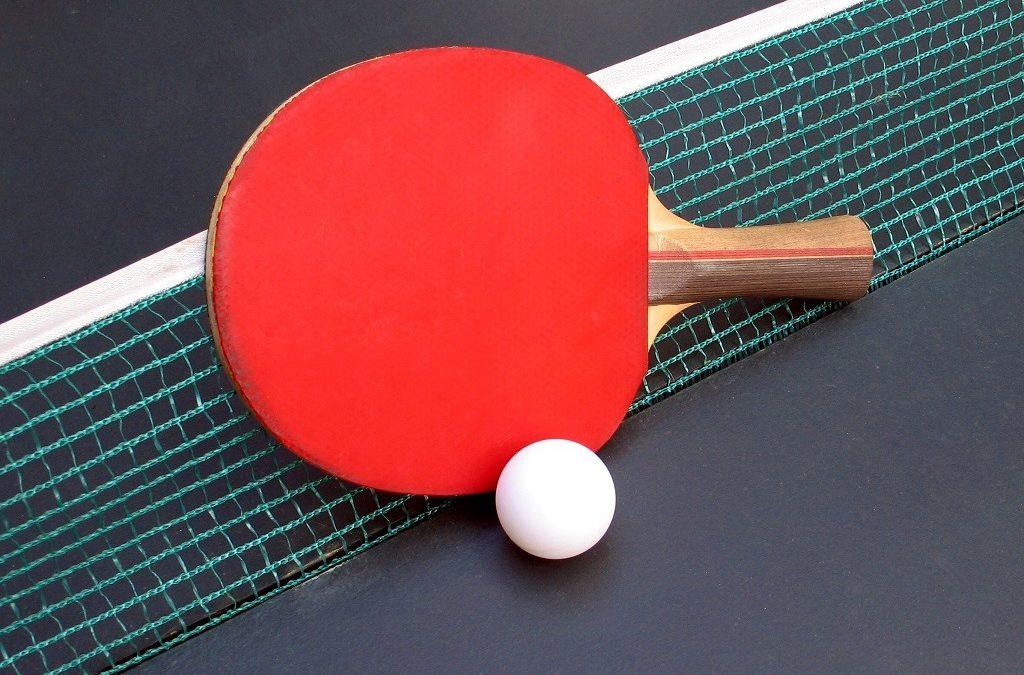 Ping-ping ütő labdával, hálóval