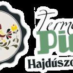Termelői piac logo